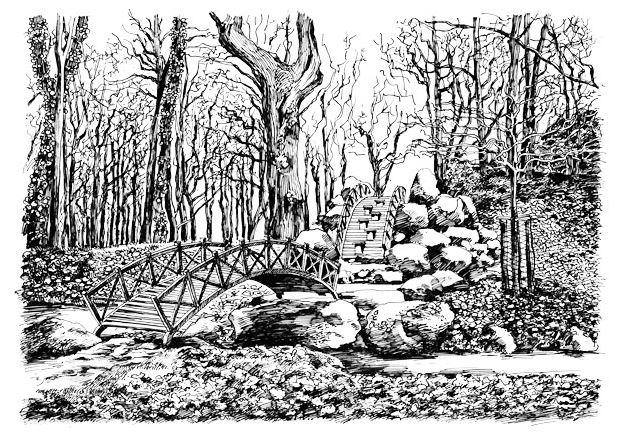 Wolf-Erik Widdel: Felsenbrücke in Oranienbaum, Feder