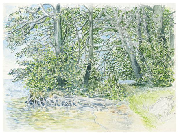 Wörlitzer Park, großes Walloch, Schocks Garten, Aquarell